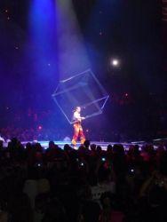 Circus Intro People (4)
