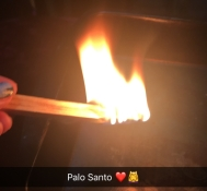 iphone - palo santo